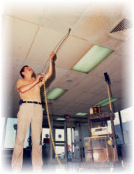 Ceiling Tile Cleaning
